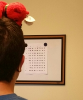 Reading letters on the Hart Chart with a Beanie Baby on my head to stop me from moving around
